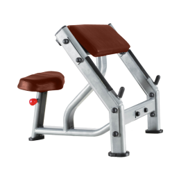 Скамья Скотта Bronze Gym J-040