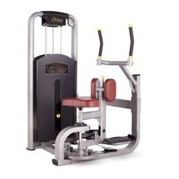 Торс-машина Bronze Gym MV-011